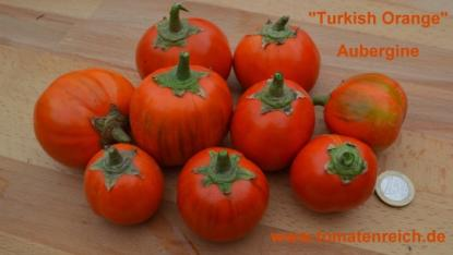 "Aubergine ""Turkish Orange"""