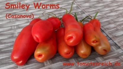 Smiley Worms - rote Flaschentomate